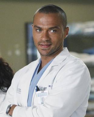 Grey's Anatomy Doc Speak: What Is Peritoneal Cavity?