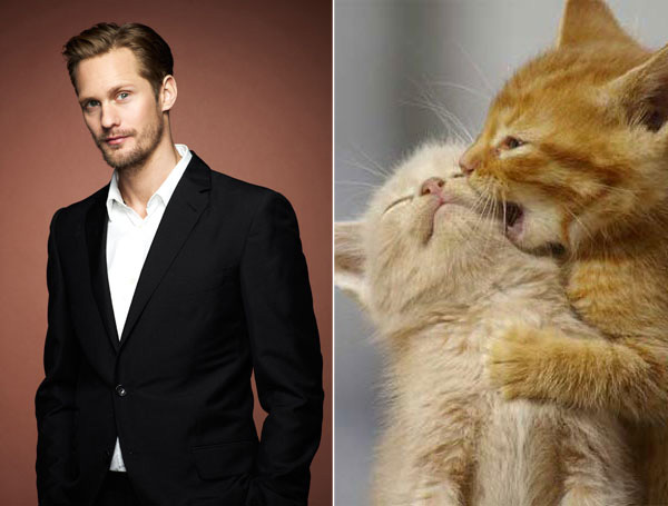 Cutie and the Beast: Alexander Skarsgard vs. Kittens