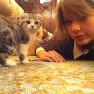Taylor Swift Dishes on Her New Kitty Meredith Grey!