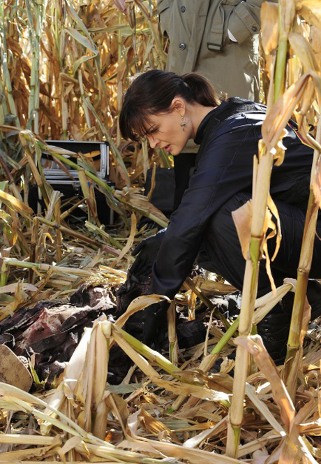 "Top 3 Grossest Moments From Bones Season 6, Episode 12: ""The Sin in the Sisterhood"""