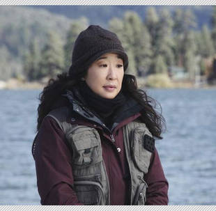 Sandra Oh Up Against Private Practice Star for a PRISM Award