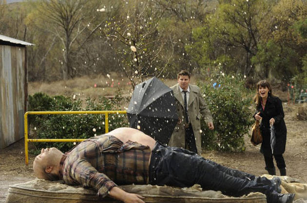 """Top 10 Funniest Quotes From Bones Season 6, Episode 17: """"The Feet on the Beach"""""""
