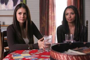 "The Vampire Diaries Recap of Season 3, Episode 12, ""The Ties That Bind"": Family Matters"