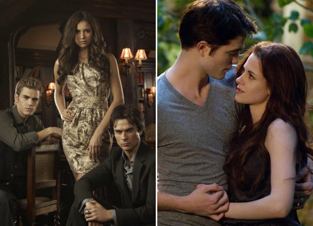 Was The Vampire Diaries or Twilight Written First?