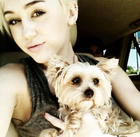 Miley Cyrus' Dog Lila Dies Shortly After Turning Two Years Old — So Sad!