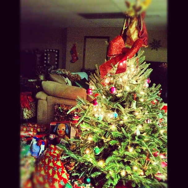 Lucky Lorenzo! Check Out the Crazy Amount of Presents Under Snooki's Christmas Tree (PHOTO)