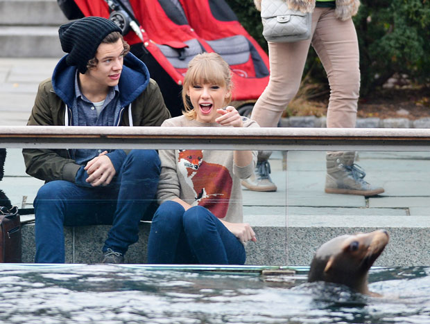 Taylor Swift and One Direction's Harry Styles Seen Together in Central Park (PHOTOS)
