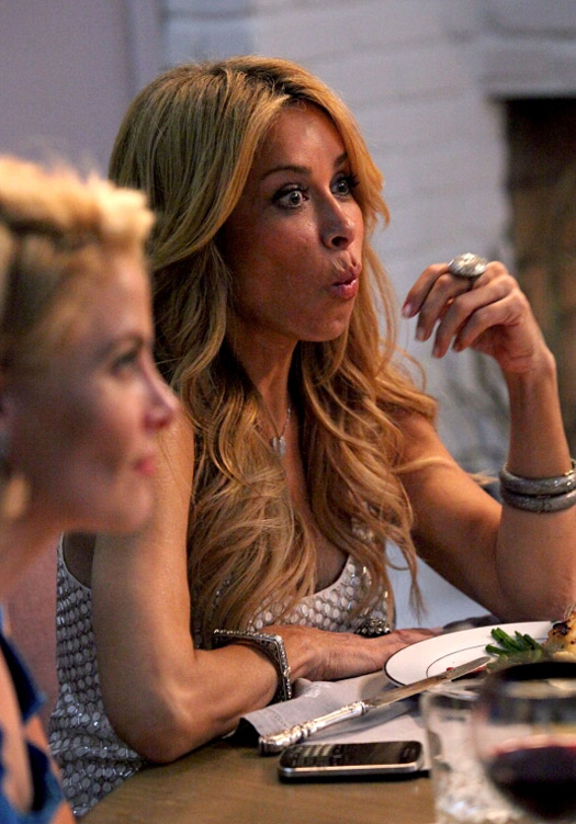 Real Housewives of Beverly Hills Recap of Season 3, Episode 7: Brandi Glanville vs. Faye Resnick