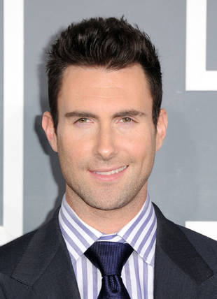 Check Out Pics of The Voice's Adam Levine's Gorgeous Hollywood Hills Home!