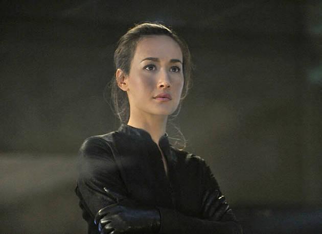Nikita Season 2 Finale Spoilers! Maggie Q Teases Death and Set-up For Nikita Season 3