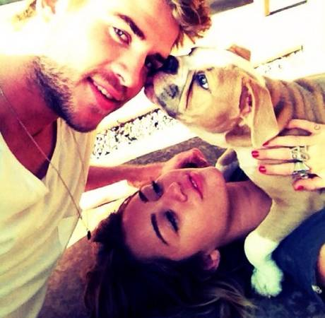 Miley Cyrus Tweets Family Photo With Liam Hemsworth and Their Puppy: Feel the Love!