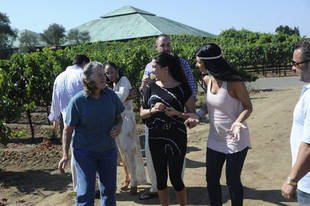 """Teresa Giudice on the Housewives' Trip to Napa: """"You Won't Believe How It Ends!"""""""