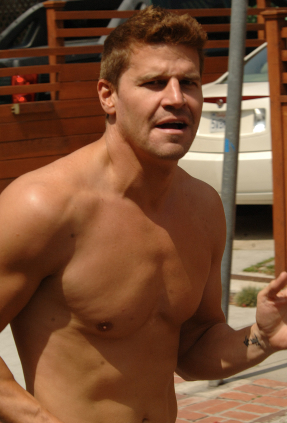 Bones Star David Boreanaz Works On His Fitness — Hot Pic of the Day