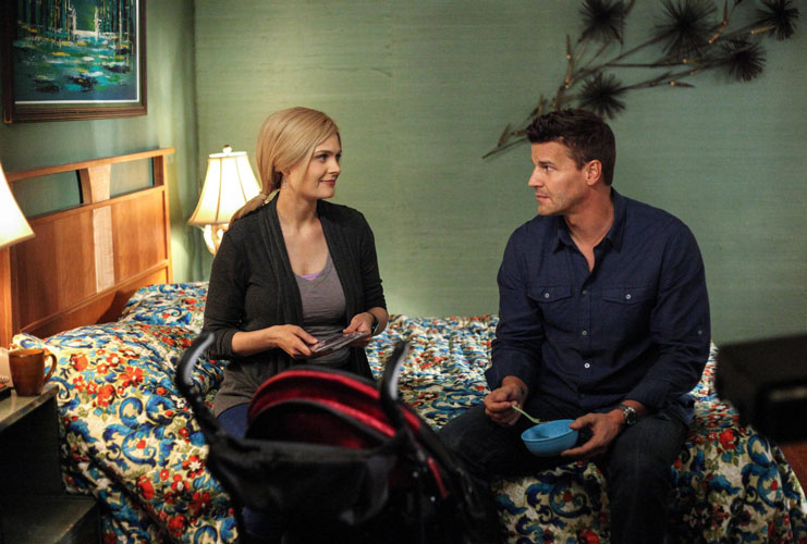 Bones Season 8: David Boreanaz and Emily Deschanel Wanted to Get More Physical During Booth and Brennan's Reunion