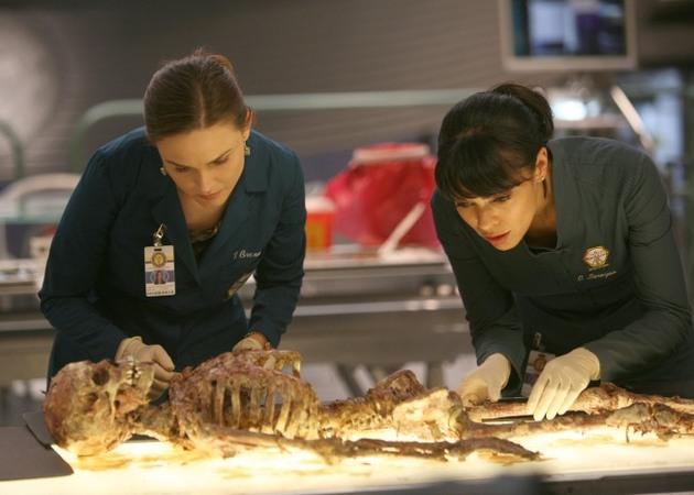"Tamara Taylor: The Identity of Cam's New Bones Season 8 Love Interest Will ""Shock"" You — Exclusive!"