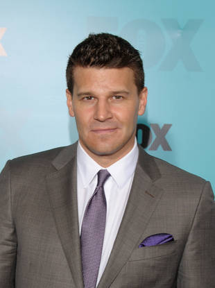 David Boreanaz and Stephen Nathan Tease Bones Relationship Drama in Season 9 — Exclusive