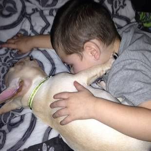 Kailyn Lowry's Son, Isaac, Cuddles With His Puppy: Cute Pic of the Day!
