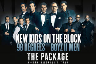 New Kids on the Block, 98 Degrees, Boyz II Men Go on Tour: You Excited?