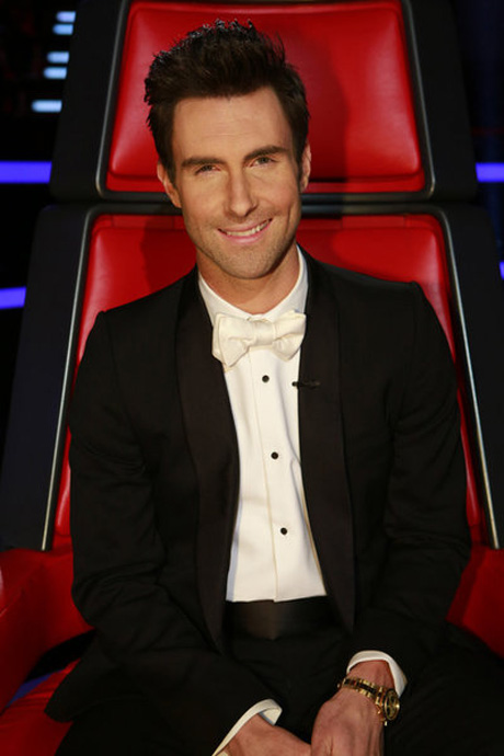 Adam Levine's New Clothing Line to Launch at Kmart and Shop Your Way in 2013
