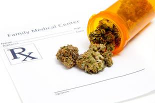 Mom Turned Into Human Services For Using Medical Marijuana To Treat Son's Leukemia
