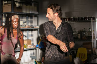The Walking Dead Season 4: Will Rick and Michonne Hook Up?