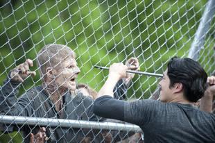 The Walking Dead Season 4: Could Carol  Peletier Murder Glenn Rhee?