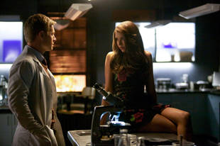 The Vampire Diaries Speculation: What Is Dr. Wes Maxfield's Mysterious Plan?