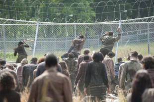 The Walking Dead Season 4 Mid-Season Finale: Will We Find Out Who's Feeding the Walkers Rats?