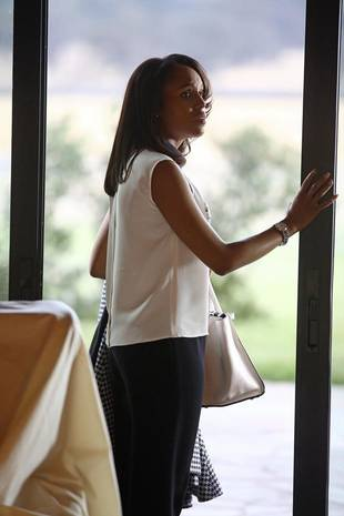 """Scandal Season 3 Spoilers: What to Expect From Episode 8, """"Vermont Is for Lovers, Too"""""""