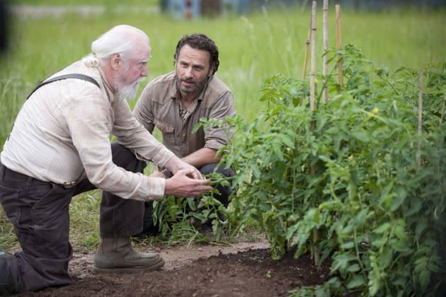 Where Are Hershel's Crutches? 3 Weird Fan Questions, Answered