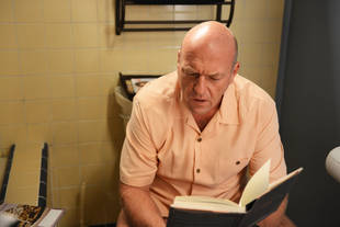 Breaking Bad's Dean Norris to Play Big Jim Rennie in Under the Dome