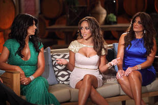 The Real Housewives of New Jersey Season 5: Does Teresa Giudice Have Anything to do With Melissa Gorga's Creepy Ex Returning?