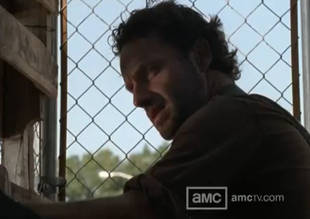 The Walking Dead Season 3 Episode 11 Recap: Andrea, Wake Up! Tyreese at Least Picked a Side
