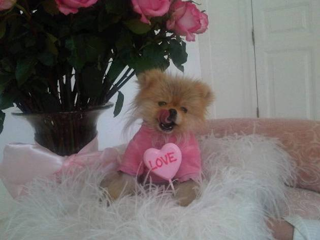 Real Housewives of Beverly Hills Cute Pic of the Day: Giggy Is Our Valentine