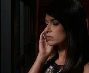 Revenge Season 2: Is Padma Lahari The Falcon?