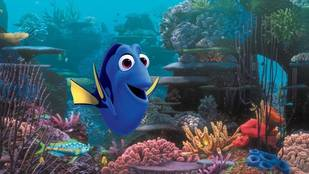 Finding Nemo Sequel, Finding Dory, to Be Released in 2015