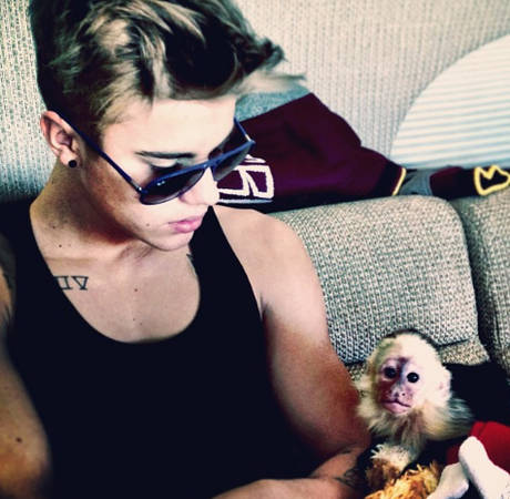 Why Does Justin Bieber Have a Pet Monkey? He's Cute, But… (PHOTOS)