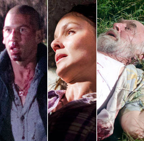 Who Had the Most Shocking Death of The Walking Dead Season 3? (POLL)