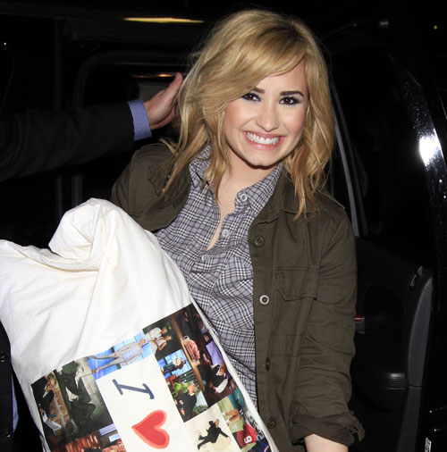 "Demi Lovato's Pillow: ""I Love"" This Fellow Celeb! (PHOTO)"