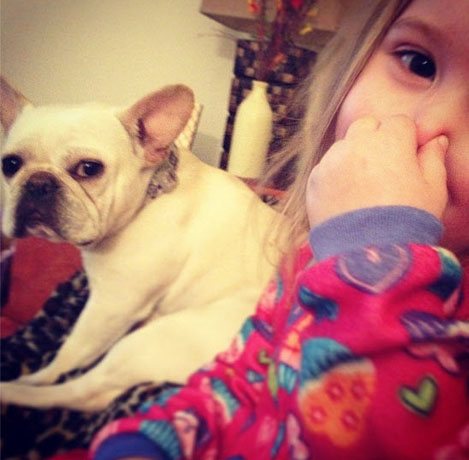 Chelsea Houska's Adorable French Bulldog Betsy's Acting Debut (VIDEO)