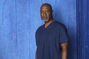 Grey's Anatomy Season 10 Spoiler: We WILL See James Pickens Jr. Again