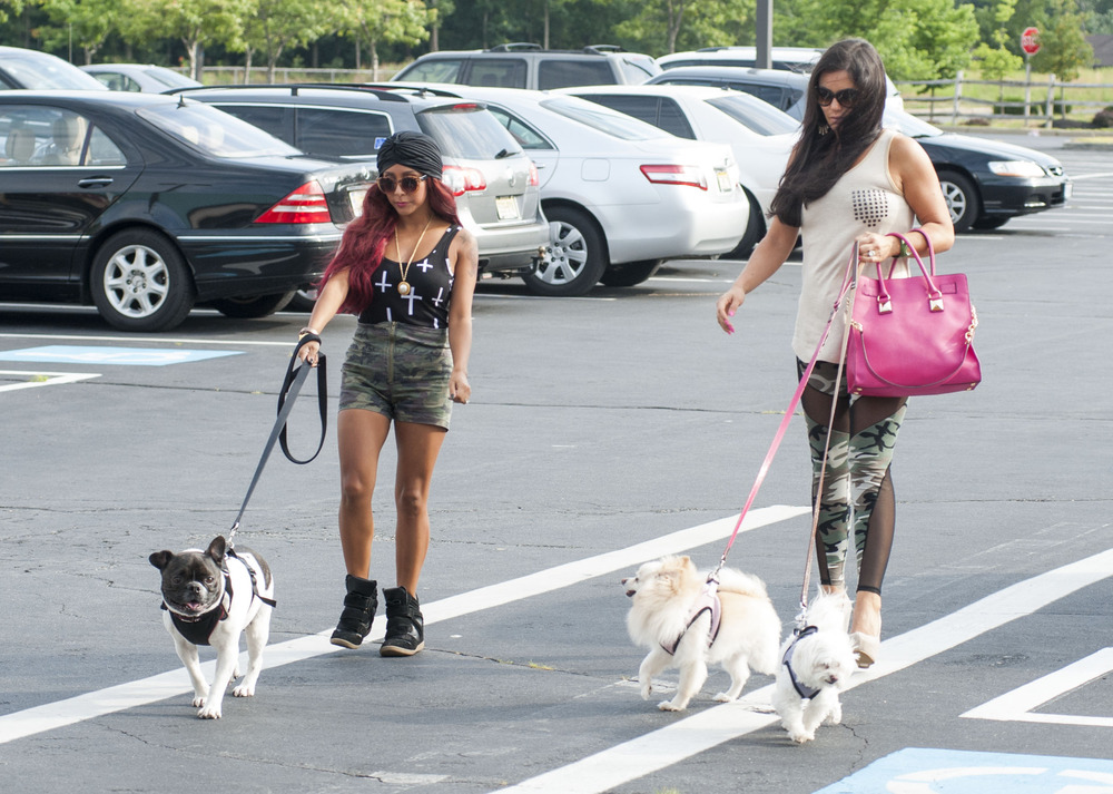 Snooki and JWOWW Season 3: Pelican Island Protests Force Girls to Shack Up! — Exclusive