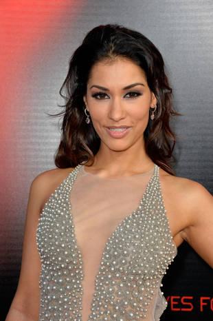 The Vampire Diaries Season 5 Casts Janina Gavankar as Tessa
