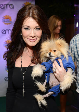 Real Housewives' Lisa Vanderpump Being Sued Over Bar Dispute — Report