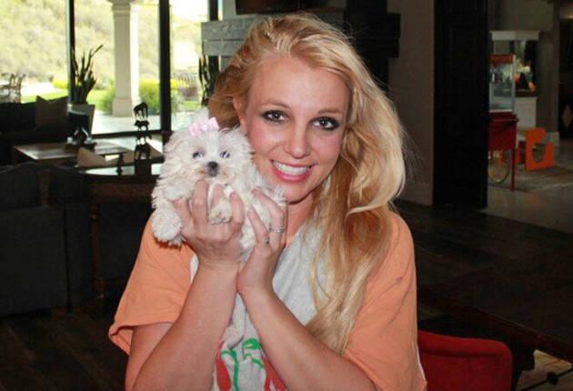 Britney Spears Spent 7 Million Dollars on WHAT in 2012?!