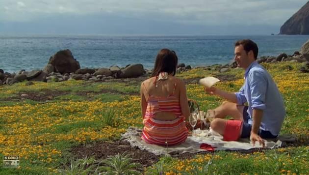 Bachelorette 2013 Finale: Desiree Hartsock Engaged to Chris Siegfried!
