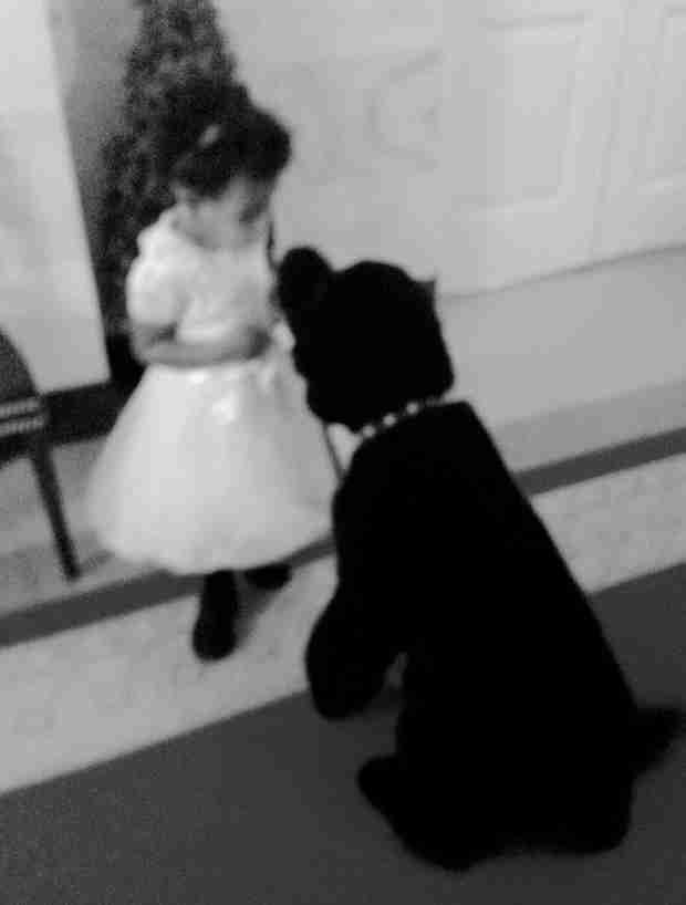 Blue Ivy Meets The Obamas' Dog, Sunny — Too Freaking Cute! (PHOTOS)