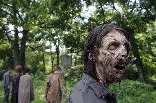 The Walking Dead Walkers: Test Your Knowledge With Three Quizzes