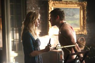 Vampire Diaries Fans Start Petition Asking Julie Plec, The CW to Support Klaroline — Exclusive Details