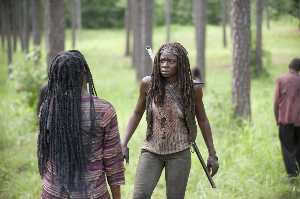 The Walking Dead Season 4: Michonne Knocking on the Door Scene Was Almost Very Different!